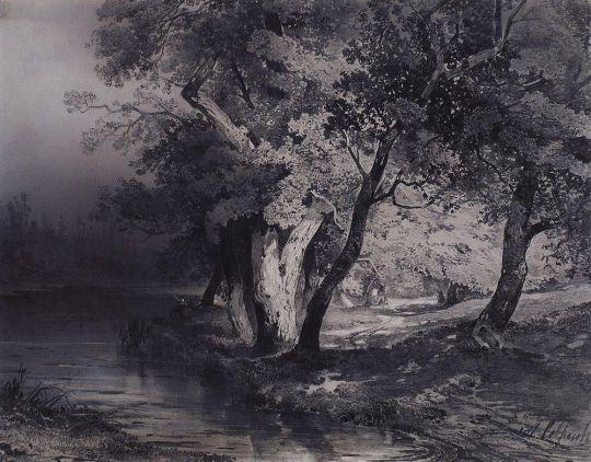 Лес у озера, освещенный солнцем
