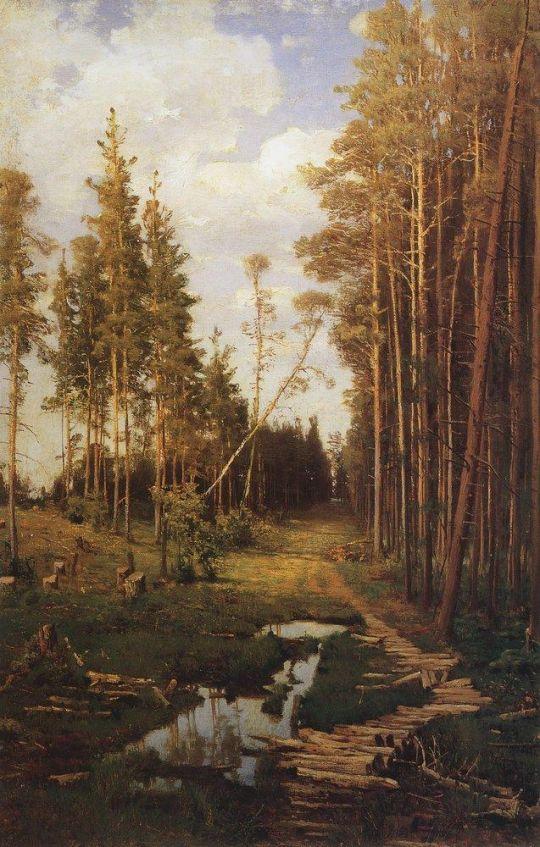 Просека в сосновом лесу