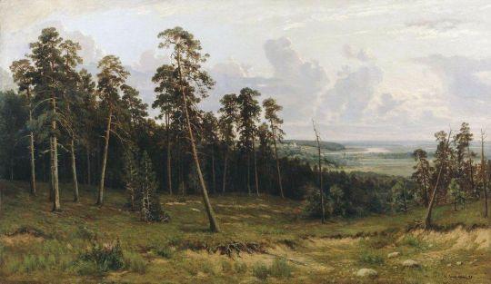 Богатый лог (Пихтовый лес на реке Каме).