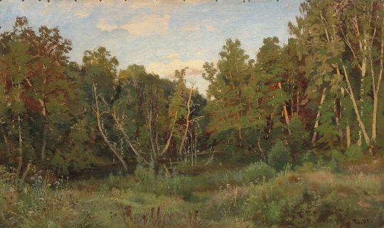 Лесной пейзаж3