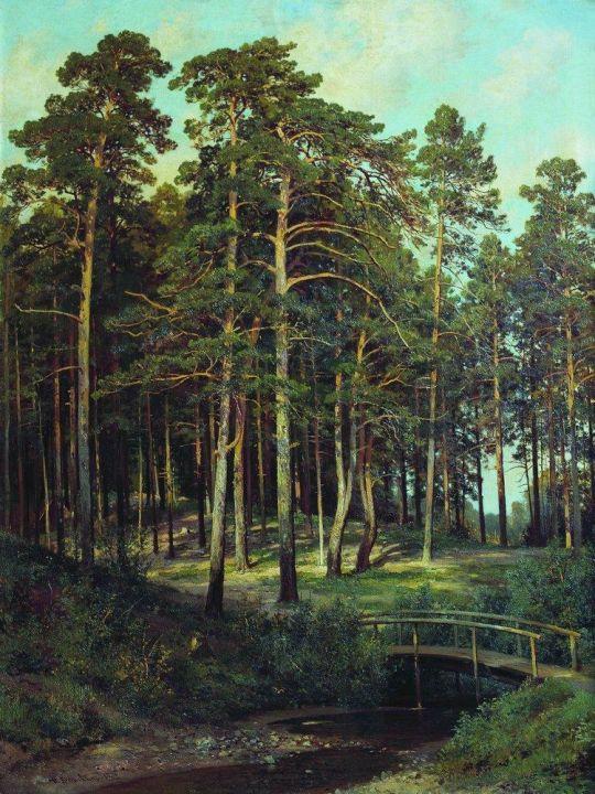 Мостик в лесу.