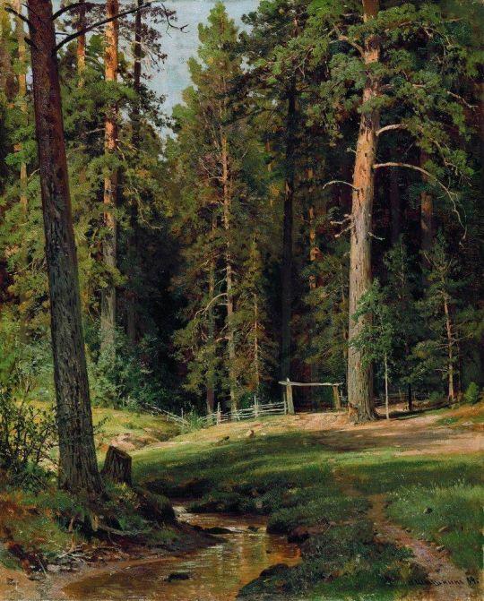 Опушка леса.
