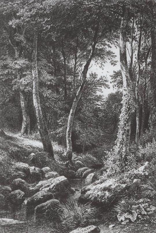 Ручей в лесу (На косогоре).