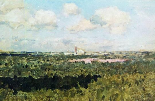 Вид на Новодевичий монастырь.