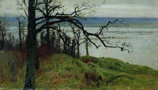 Волга с высокого берега.