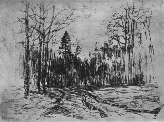 Дорога в лесу. Около