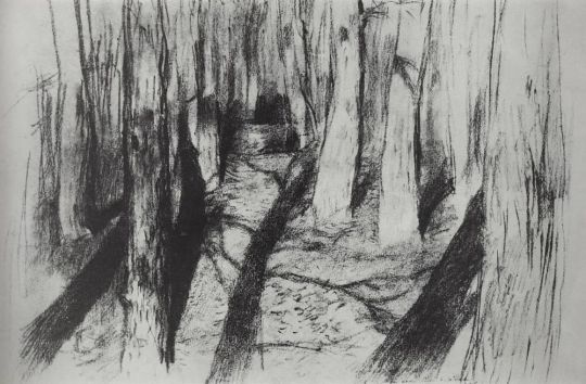 Стволы деревьев.