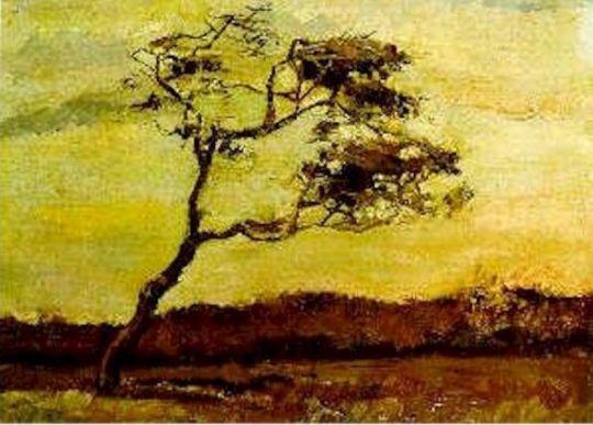 Дерево на ветру