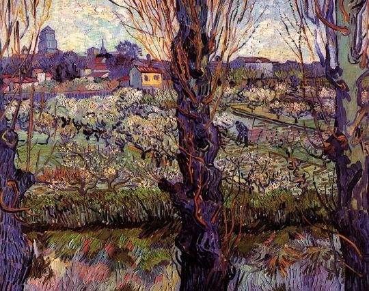Фруктовый сад в цвету с видом на Арль