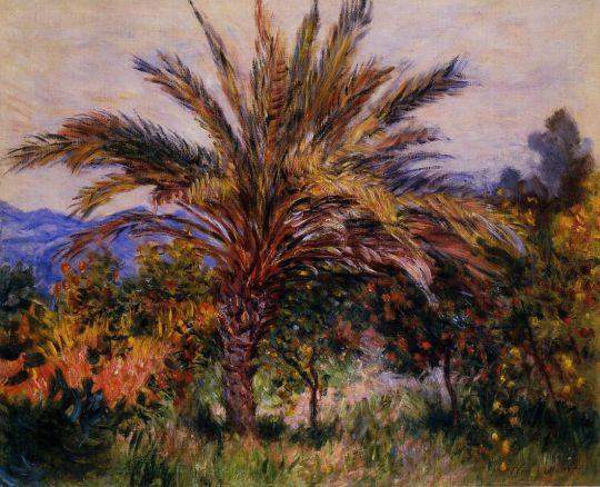 Пальмы в Бордигере