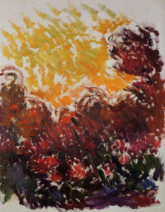 Сад, гладиолусы