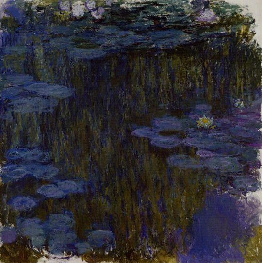 Водяные лилии 29