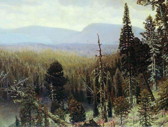 Тайга на Урале. Синяя гора.