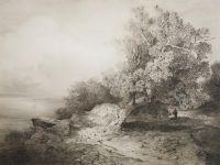 Старый дуб у обрыва над рекой