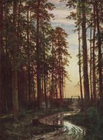 Вечер в сосновом лесу.