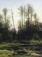Лес весной.