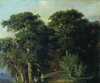 Лесной пейзаж с цаплями.