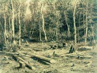 Лесной ручей (Чернолесье).