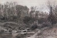 Лесной ручей1
