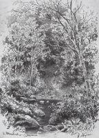 Ручей в лесу1.