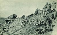 Скалы на берегу моря. Гурзуф.