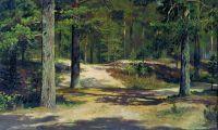 Сосновый лес2.
