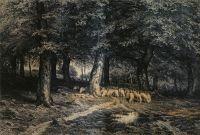Стадо овец в лесу.