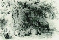 Стадо овец под дубом.
