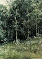 Цветы в лесу.
