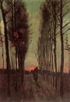 Тополиная аллея на закате
