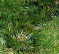 Пучки травы