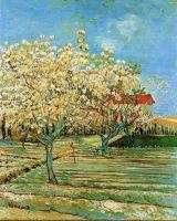Фруктовый сад в цвету
