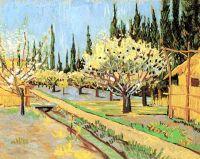 Фруктовый сад в цвету в обрамлении кипарисов