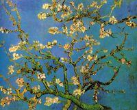 Цветущее Миндальное Дерево