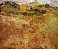 Пшеничные поля и Овер на заднем плане