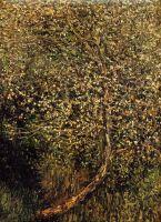 Цветущие яблони у воды