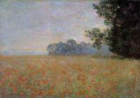 Овсяное и макавое поле