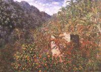 Оливковые деревья и пальмы, в долине