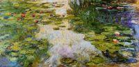 Водяные лилии 10