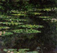 Водяные лилии 3