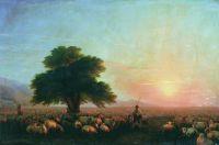 Отара овец (Стадо овец)