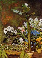 Арум и оранжерея с растениями