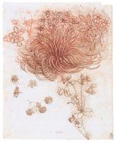 Рисунок 118