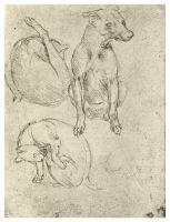 Рисунок 125