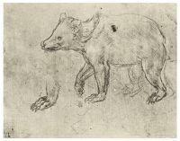 Рисунок 126
