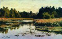 Лесная река. 1890