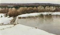 Зимний пейзаж. 1893