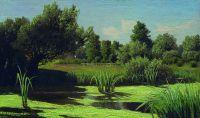 Пейзаж. Камыши на реке. 1880–1890-е
