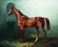 Лошадь в стойле