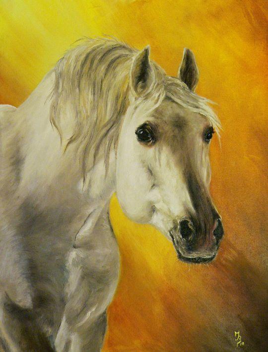 Лошадь №6